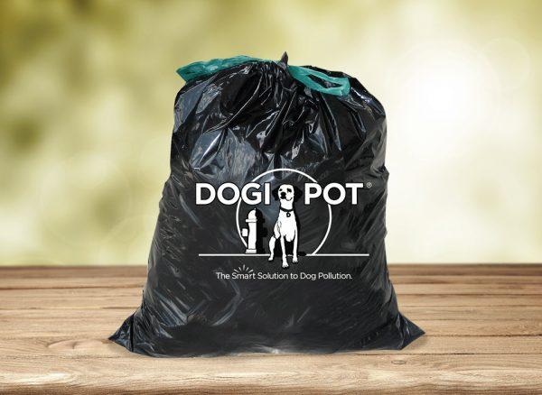agility dog supplies