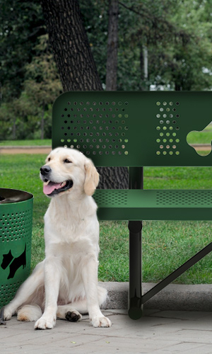 dog park planning for large dogs